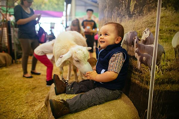 Sydney Royal Easter Show Facebook