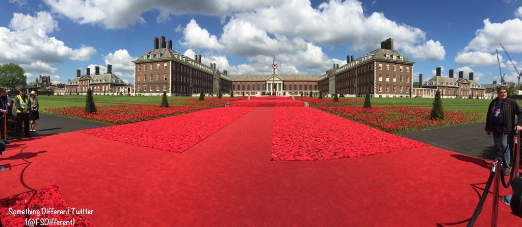 Chelsea Flower 5000 Poppies Panorama View via Something Different Twitter May 23 2016