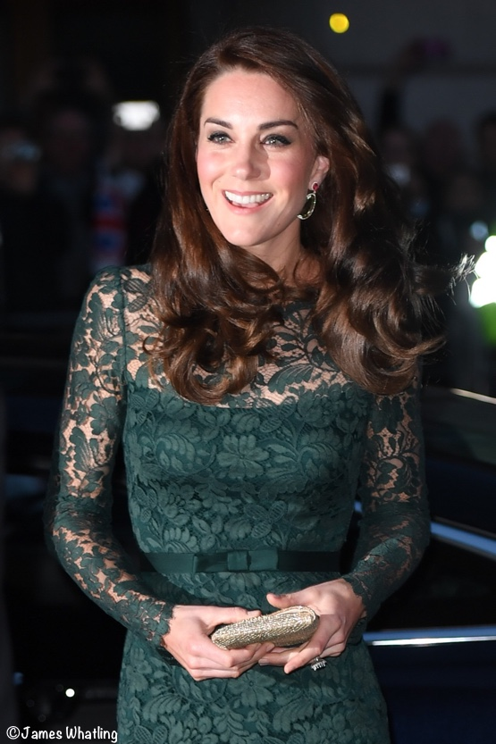 Kate Middleton lace gown portrait gallery