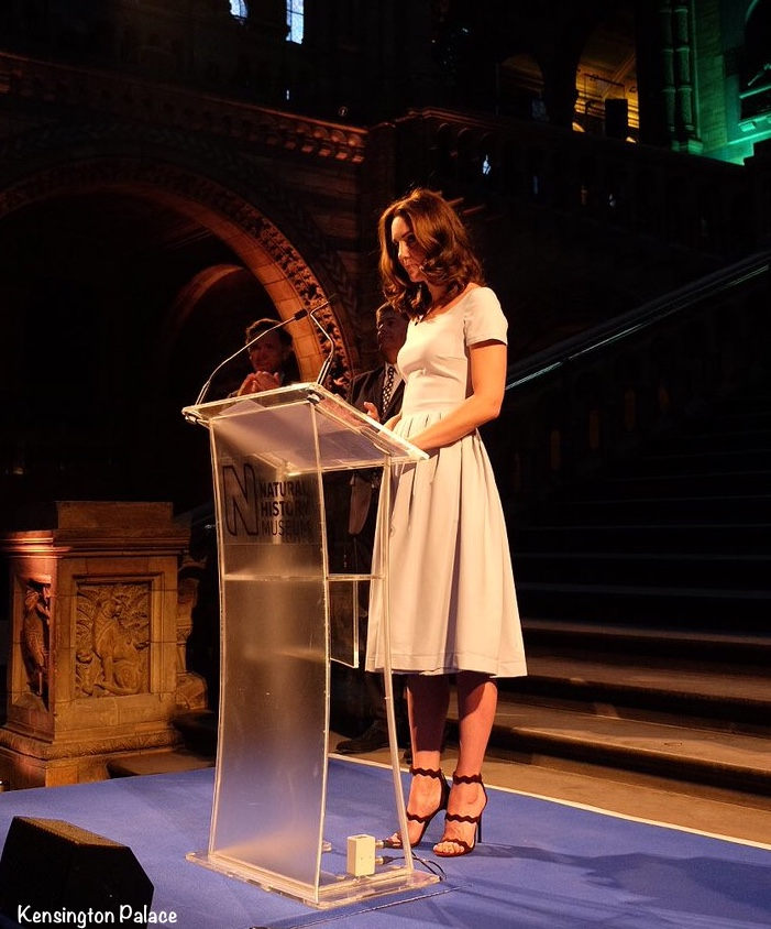 Kate Middleton Duchess Cambridge Hintze Hall Natural History Blue Preen