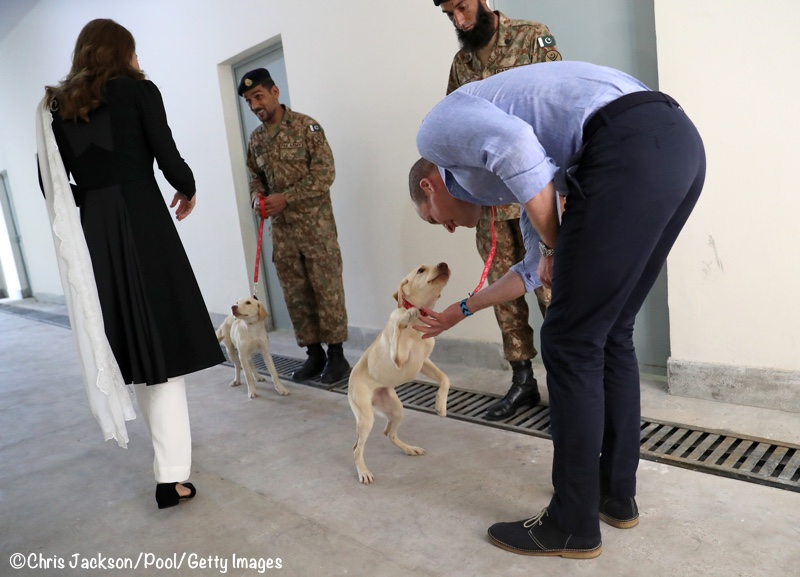Kate Middleton puppies Salto Sky Islamabad Canine Centre Tour